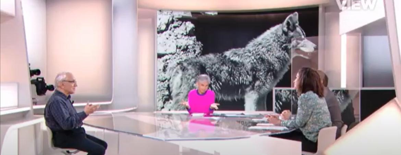 Les loups : nos méthodes ne sont pas les bonnes !